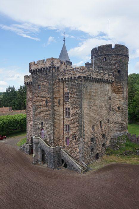 Замок Дофин. Общий вид замка