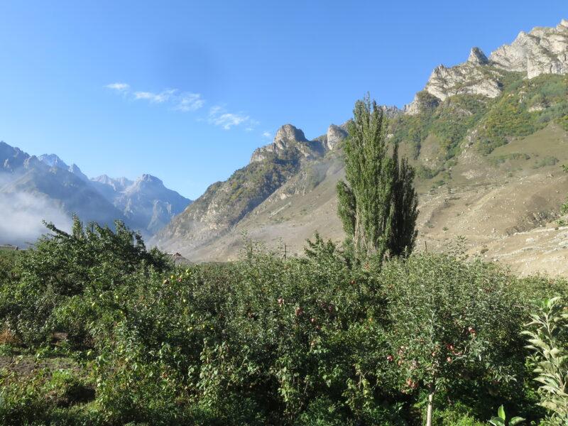 Балкария. Вид на сад и горы во дворе гостевого дома