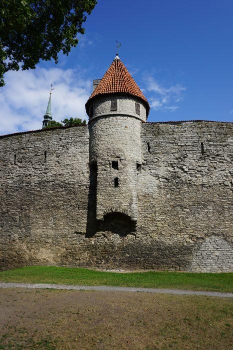 Таллин. Башня Талли
