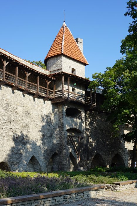 Таллин. Башня Талли со стороны города