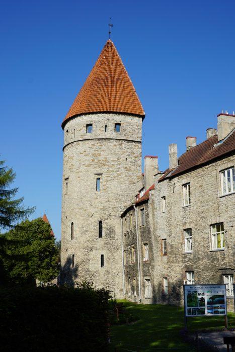 Таллин. Башня Лёвеншеде