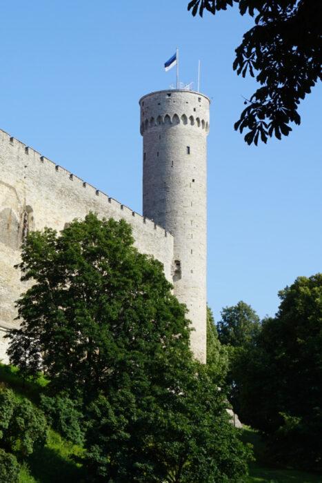 Таллин. Тоомпеа. Башня Длинный Герман